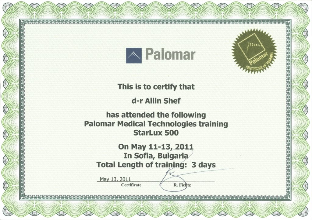 Certificate for attendance of face anatomy workshop belonging to doctor Ailyn Shef.